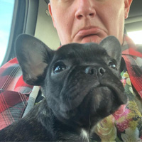 Will Macarro pouts as he holds his black French Bulldog puppy, Maude.